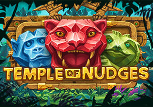 templeofnudges_not_mobile_sw